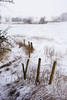 Snow fence-9278 (toniertl) Tags: march2018 somerton local snow toniphotoxoncouk fence barbedwire sharp thorns wintercold freezing bleak field landscape highkey distance