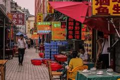 Fish Street (marco_catullo) Tags: fish market street guilin chinese china signs neon carteles pescado mercado lovelycity