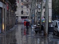 Rambla del Raval (stillunusual) Tags: barcelona catalunya catalonia spain bcn rambladelraval raval streetphotography street city urban urbanscenery streetscene streetlife citylife rain umbrella travel travelphotography travelphoto travelphotograph 2018