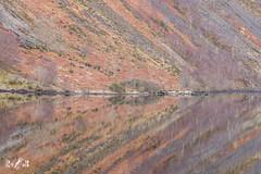 Reflections, lines and colours (Loch Awe, Scotland) (Renate van den Boom) Tags: 02febuari 2018 bergen boom europa glencoe grootbrittannië jaar landschap maand meer natuur renatevandenboom schotland seizoenen winter