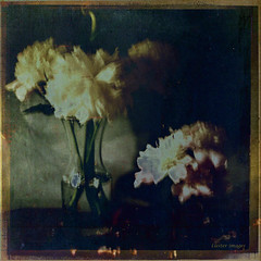yesterday's peonies... (elle Q1) Tags: original digital image post processed topaz textured distressed vintage photo art flowers peony glass vase table floral pink yellow dark blue green llester images