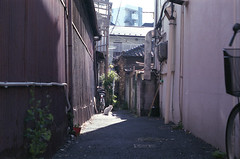 shinagawa by m_travels - Film: Fuji NPH 400 (expired 2004)  Happy Caturday!