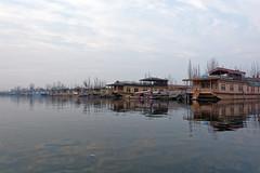Dal Lake (slyronit) Tags: kashmir srinagar dallake shikara houseboat