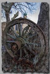 Vestige... (jamesreed68) Tags: roue 68 alsace thierenbach grandest hautrhin canon eos 600d