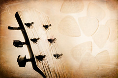 Headstocks and Plectrums and Slides (gimmeocean) Tags: sliderssunday hss guitar acoustic headstock picks plectrums texture art