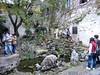 P1130704-2 (Simian Thought) Tags: xitang china watertown