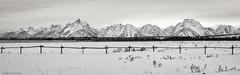 Tetons - Wyoming (petechar) Tags: petechar charlesrpeterson panorama landscape mountains winter tetons grandtetonnationalpark panasonicg9 leica1260mm monochrome blackandwhite tripod