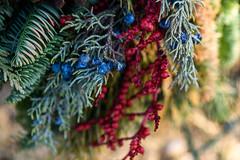DSC_5268 (Stacey Conrad) Tags: cemetery d7500 lancaster lancastercemetery nikon pa wreath