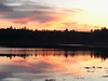Nature skyline (saudades1000) Tags: massachusetts bog landscape reflection