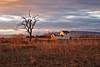 Luz de Ocaso (pascual 53) Tags: canon xabi paisaje acaso caseta luz 50mm navarra corella largaexpo eos1dmarkiii