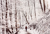 glistening wonders (the girl who made it on her own) Tags: ronakeller rona glisteningwonders stuttgart winterinstuttgart snowinstuttgart stuttgartost winterwonderland glisteningsnow sparkling whiteworld winter winterwonders snowinfebruary daniel winterwalk takingawalk sonya7