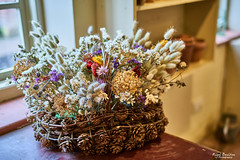 January Still Life (nigelboulton72) Tags: dried flowers basket pine cones craft arrangement