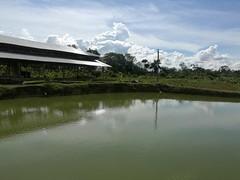 IMG_20180111_142826 (chocoenlaweb.com) Tags: chocó chocoenlaweb quibdó turismo colombia pacífico tutunendo naturaleza bahíasolano nuquí saldefrutas cascada ichó