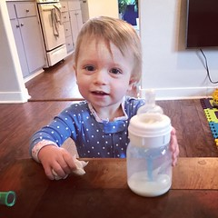 Drinking and Dusting (enovember) Tags: toddler drink bottle dust chores smile bangs darling cute happy granddaughter dusting love precious