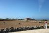 Essaouira - Casablanca (Malu Green!) Tags: essaouira casablanca marrocos maroc morroco salina sal salt estrada carretera road praia playa beach landscape paisagem horizonte horizon cidade ciudad city portão gate portico litoral mar sea coast malugreen muslim muçulmano