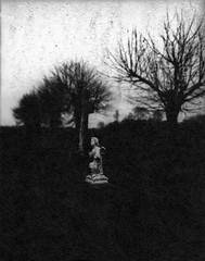 A light in the dark / Ein Licht in der Dunkelheit (Rosenthal Photography) Tags: washiw25 ff120 friedhof landschaft tetenaleukobrom1120°c3min bnw schwarzweiss anderlingen 201805 asa25 6x7 mittelformat städte bw gräber dunkelheit analog mamiya7 dörfer siedlungen landscape mood nautre mediumformat blackandwhite graveyard dark darkness endofdays daysofdarkness light angel mamiya 50mm f45 washi filmwashi washiw 12asa tetenal eukobrom 11 epson v800 cemetery