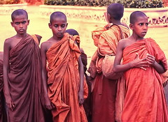 Young Buddhist Monchs (gerard eder) Tags: world travel reise viajes asia southasia srilanka buddhist people peopleoftheworld outdoor children childrenoftheworld buddhism städte street streetlife