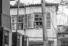 Tributo ao Sabotage_Leu Britto-233 (Jornalista Leonardo Brito) Tags: rap música festival sabotage favela periferia quebrada maconha cachaça tati botelho codinome shil realidade cruel