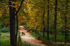 Parque del Retiro, Madrid. (fcuencadiaz) Tags: analogica fotografiaargentica fotografiaquimica canoneos60 diapositiva diapositivasescaneadas plustek velvia madrid 35mm elretiro parquesyjardines