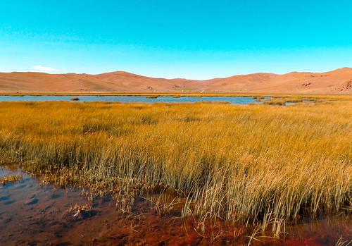 Randonnée autour du lac Song Kul