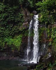 Troisième Chute du Carbet (Guadeloupe Image) Tags: guadeloupe antilles cascade hiking rando forêt sauvage chute