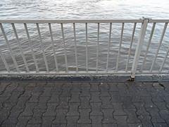 Nach dem Hochwasser in Koblenz - Januar 2018 (onnola) Tags: koblenz rheinlandpfalz deutschland rhinelandpalatinate germany fluss river mosel moselle uferweg ufer bank hochwasser flood überschwemmung wasser water geländer railing