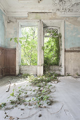 Palace of Dreams (Jonnie Lynn Lace) Tags: abandoned portugal pt villa house home ruins modern derelict decay peeling paint vines nature takes over window windows architecture texture textures detail blue white red green yellow spring leaves trip travel europe european exploration adventure digital nikkor nikon d750 24mm bright sunlight light shadows day art flickr interior indoors inside indoor colours colorful colors rural countryside old historic classic