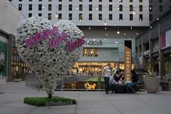 DSC05442 (KayOne73) Tags: downtown la dtla los angeles photowalk sony a7ii voigtlander 35mm f 14