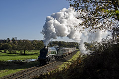 Autumnal A4 (Nigel Valentine) Tags: 60009 a4 union south africa lner burrs country park east lancashire railway