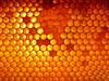 Bee geometry (alansurfin) Tags: honey honeycomb comb cells hexagonal hexagon sunlit sunlight beeswax beekeeping beehive symmetry miel meile honig ape gold