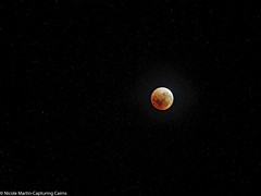 "Lunar eclipse super blue blood moon-31-01-2018-4 • <a style=""font-size:0.8em;"" href=""http://www.flickr.com/photos/146187037@N03/28254739529/"" target=""_blank"">View on Flickr</a>"