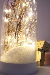 IMG_0132 (SethDanbo) Tags: light lights christmas danbo danboard cardbox danbox cardboard snow