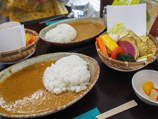 Kamakura Vegetable Chicken Curry (Kanta Curry)