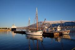 Three ships (narnejo) Tags: tromsø tromso sørsjeteen cruiseship urbanarctic