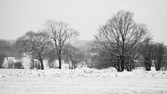 Eccleston 27 Feb 18 (nickcoates74) Tags: 55210mm 2018 a6300 beastfromtheeast chorley eccleston february ilce6300 lancashire newlane sel55210 snow sony winter uk