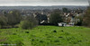 View From Pole Hill 2005 (M C Smith) Tags: landrover cars parking forest eppingforest polehill trees bushes houses church spire sububia grey clouds buildingsupplies yellow lamps path