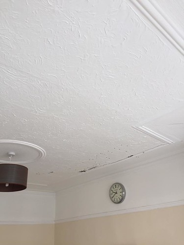plastercore.co.uk Ceiling Before