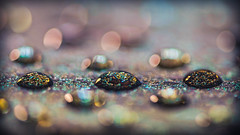 Like jewelry (Ro Cafe) Tags: 52semanas52palabras circles círculos bokeh drops water glitter colorful macro nikkormicro105f28 nikond600