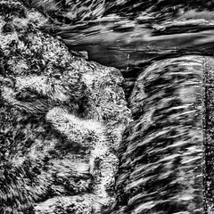 Lenne water (MAICN) Tags: 2018 square quadratisch fluss überspült letmathe mono wellen hochwasser sw schwarzweis bw highwater blackwhite monochrome river water lenne floodwater wash waves einfarbig wasser hightide submerged