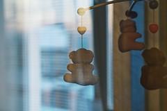 behind the glass (raisalachoque) Tags: flickrfriday three'sacrowd glass window suspended toys behindtheglass teddybear smalltoys 7dwf