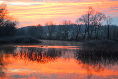 kessler swamp sunrise (brown_theo) Tags: kessler swamp state nature preserve ohio hideaway hills hocking fairfield county sugargrove rural odnr