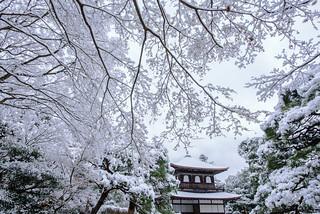 銀閣寺14・Ginkakuji Temple