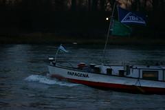 MS PAPAGENA (Lutz Blohm) Tags: mspapagena speyer schüttgutfrachter rhein rheinschifffahrt binnenschiffe binnenschifffahrt gütermotorschiff fluskilometer402 sonyalpha7aii fe70300goss