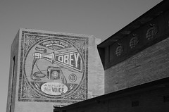 """oBEY Mural"" (Photography by Sharon Farrell) Tags: muralarts murals streetart asburypark asburyparknj asburyparknewjersey newjersey jerseyshore blackandwhite noiretblanc"