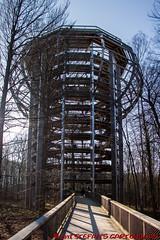 """Aussichtsturm """"Adlerhorst"""" vom Baumwipfelweg (Stefan's Gartenbahn) Tags: baumwipfelweg aussichtsturm adlerhorst rügen prora naturerbe ostseebad binz natur architektur outdoor buchenwald"""