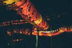 芝山巖|台北 Taipei (里卡豆) Tags: 臺北市 台北市 台灣 tw 臺灣省 olympus penf zd 50mm f20 olympuszd50mmf20 macro taipei 台北 taiwan 芝山巖