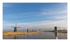 Ein Wintertag in KINDERDIJK  IV (Babaou) Tags: niederlande nederland zuidholland kinderdijk molen windmolen windkraft windkraftanlage mühle windmühle pumpwerk kanal windmill entwässerung weltkulturerbe worldheritagesite winter