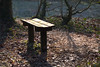 There is still a spot available (herman hengelo) Tags: bench bank ledeboerpark enschede thenetherlands sunlight