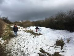 snow drift2
