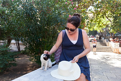 Monica meets a kitten (Zlatko Unger) Tags: dubrovnik croatia hrvatska kitten cute kitty hr